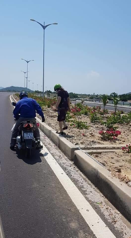 Vụ trộm hoa trên QL ngàn tỉ: Chủ tịch tỉnh Bình Định yêu cầu xử lý nghiêm! - Ảnh 1.
