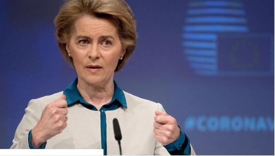 Liên minh châu Âu tăng áp lực lên Trung Quốc với lời kêu gọi hợp tác điều tra - Ảnh 1.