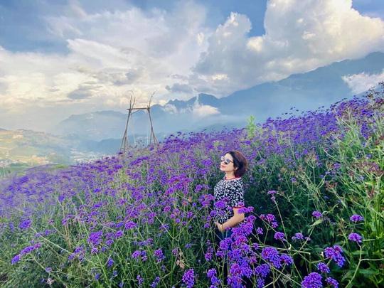 Check in đồi hoa tím, chụp những bức ảnh đẹp để đời - Ảnh 4.