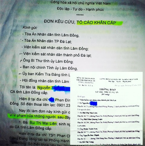 Vợ lừa đảo, Giám đốc Sở Tư pháp Lâm Đồng bị kỷ luật - Ảnh 3.