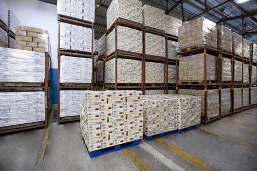 Vinamilk xuất khẩu 85 container sản phẩm sữa sang Hàn Quốc - Ảnh 1.