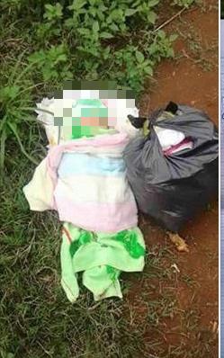 Đà Nẵng: Một trẻ sơ sinh bị bỏ rơi, tử vong thương tâm trước cổng chùa - Ảnh 1.