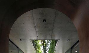 Nhà mái tranh giữa phố thị - Ảnh 7.