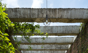 Nhà ống ẩn trong khu rừng - Ảnh 5.