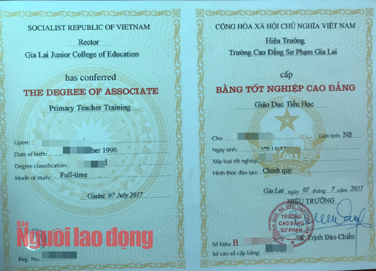 Đau lòng học Cao đẳng sư phạm, không được tuyển dụng giáo viên tiểu học - Ảnh 1.