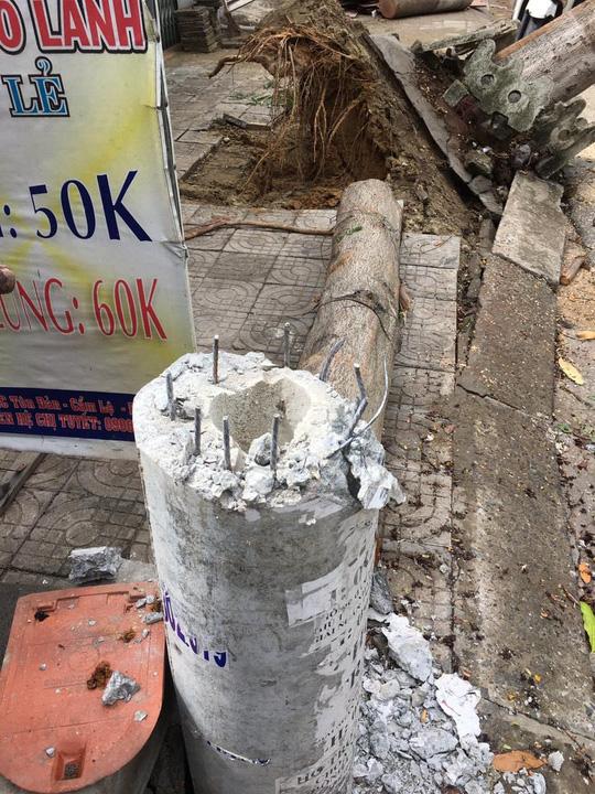 Điện lực Đà Nẵng lên tiếng về vụ cột điện bị gãy do ảnh hưởng bão số 5 - Ảnh 2.