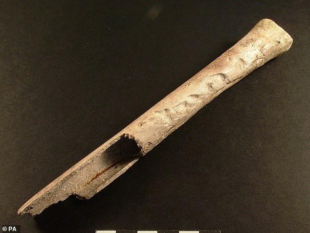 Sốc với người đẹp 4.500 tuổi mang theo xương người khác vào mộ - Ảnh 2.