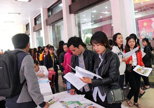 Thừa Thiên - Huế: 5.000 vị trí việc làm chờ người lao động - Ảnh 1.