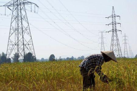 Công ty Trung Quốc tham gia vận hành lưới điện quốc gia Lào - Ảnh 1.