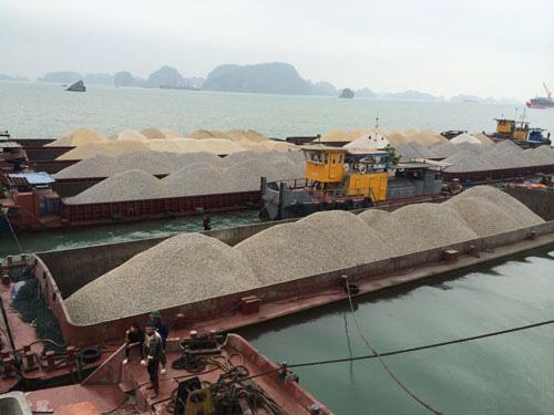 Vụ doanh nghiệp mất tiền tỉ vì công văn... hỏa tốc: Hải quan Quảng Ninh đề nghị tháo gỡ - Ảnh 1.
