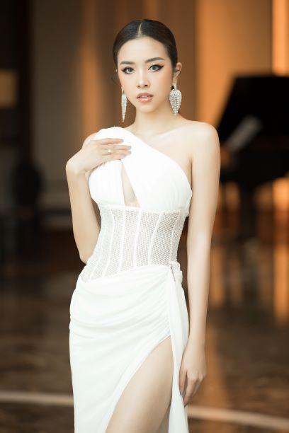 Đàm Vĩnh Hưng, Trần Tiểu Vy cùng tìm kiếm hoa hậu - Ảnh 11.