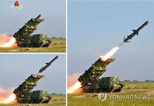 Hàn Quốc và Triều Tiên âm thầm chạy đua vũ trang - Ảnh 1.