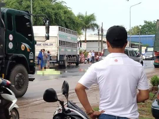 Hai vợ chồng từ Bình Thuận sang Đồng Nai làm thuê bị xe tải tông chết thương tâm - Ảnh 2.