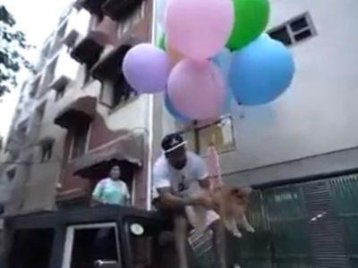YouTuber nổi tiếng bị bắt sau khi buộc chó cưng vào bóng bay - Ảnh 2.