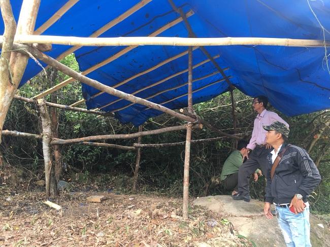 Bình Định: Đề nghị điều tra vụ đánh cán bộ, đốt cháy lán trại bảo vệ rừng - Ảnh 1.