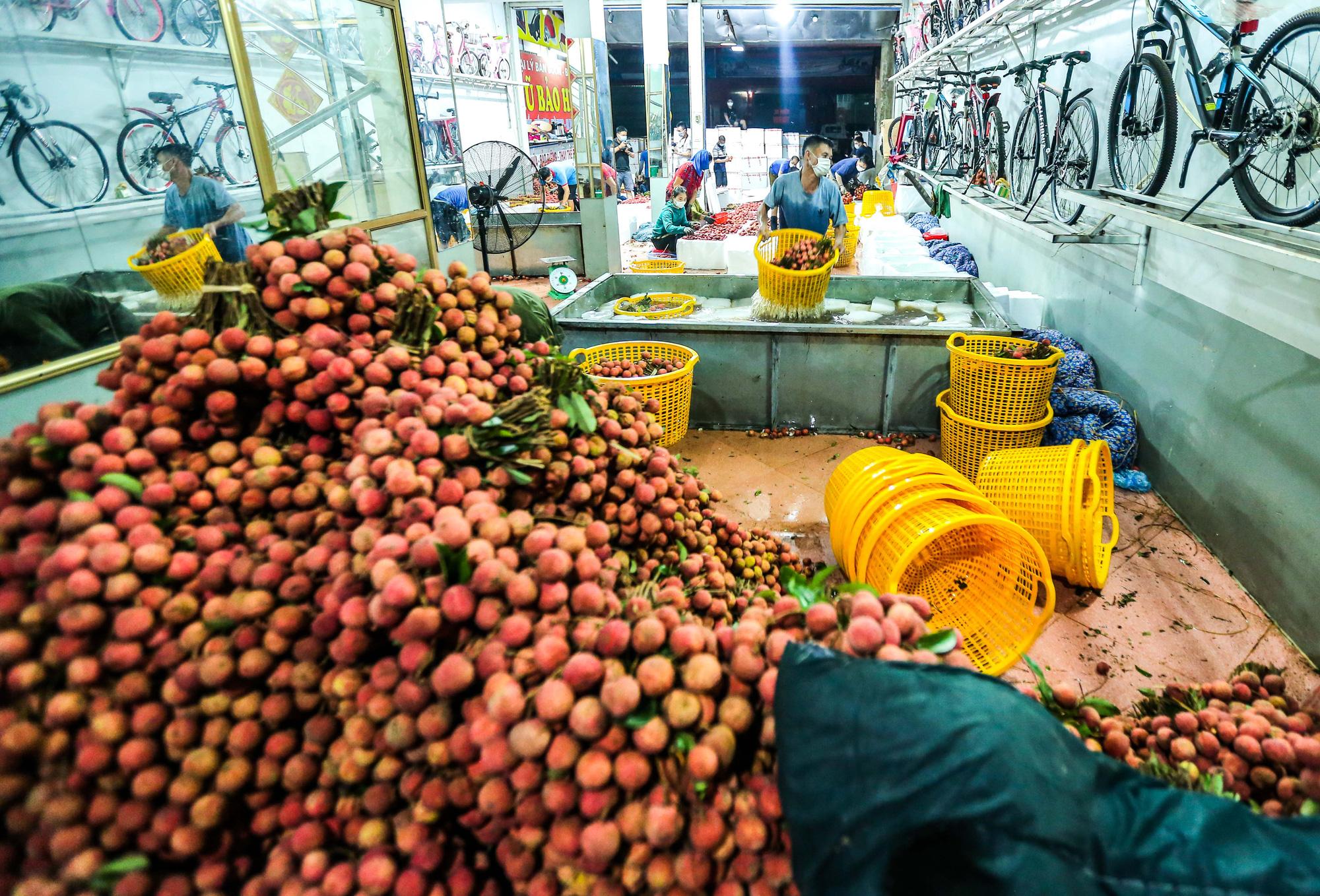 CLIP: Xuyên đêm đóng gói vải đưa sang Trung Quốc tiêu thụ - Ảnh 7.