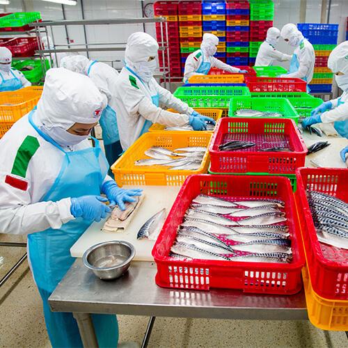 Một doanh nghiệp tại Khu công nghiệp Tân Tạo bị phong tỏa - Ảnh 3.