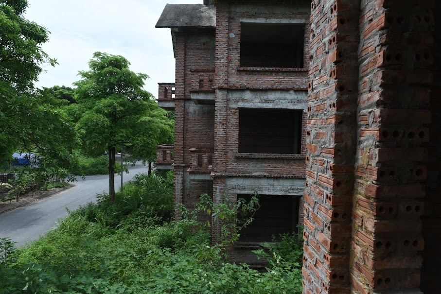 CLIP: A series of abandoned villas, urban areas in Hanoi become a place to graze cows - Photo 10.