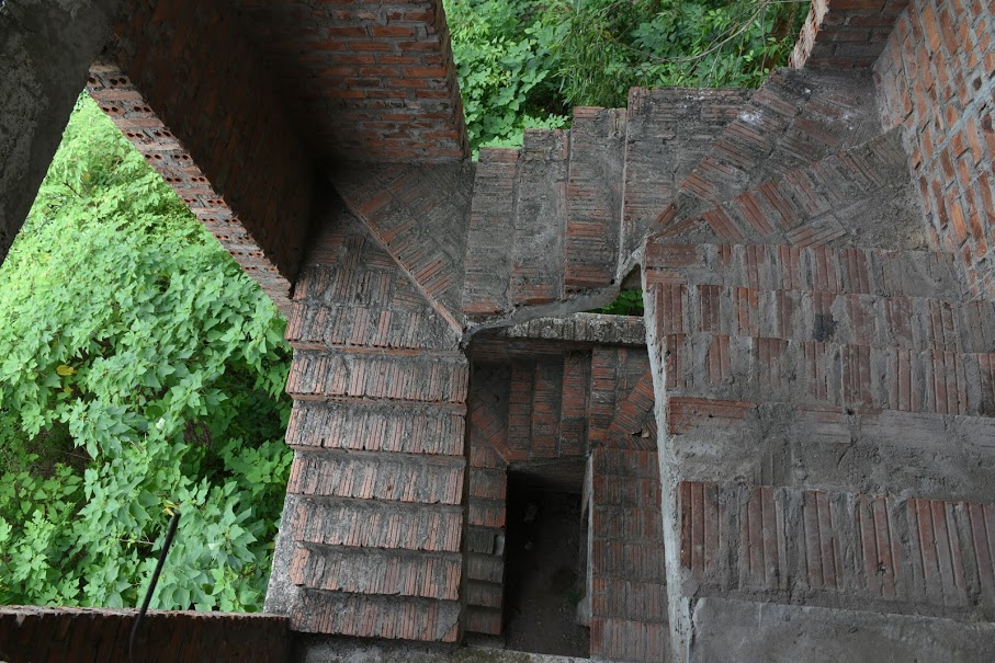 CLIP: A series of abandoned villas, urban areas in Hanoi become a place to graze cows - Photo 9.