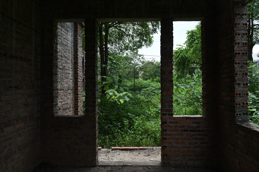 CLIP: A series of abandoned villas, urban areas in Hanoi become a place to graze cows - Photo 8.