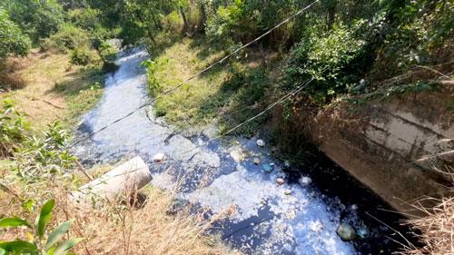 Hãy cứu lấy sông rạch Đông Nam Bộ! - Ảnh 1.