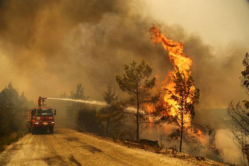 Cháy rừng hoành hành ở nhiều nước - Ảnh 1.