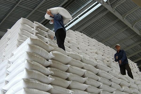 Bình Phước, Bạc Liêu, Sóc Trăng được cấp hơn 4.000 tấn gạo hỗ trợ người dân trong dịch Covid-19 - Ảnh 1.