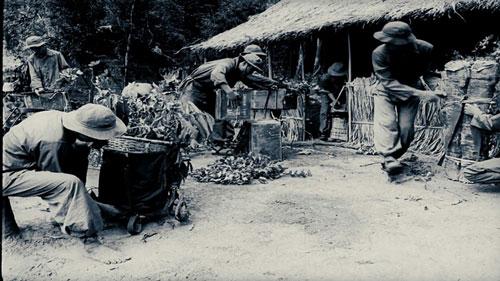 Công chiếu bộ phim tài liệu về chiến tranh giải phóng dân tộc, bảo vệ Tổ quốc - Ảnh 1.