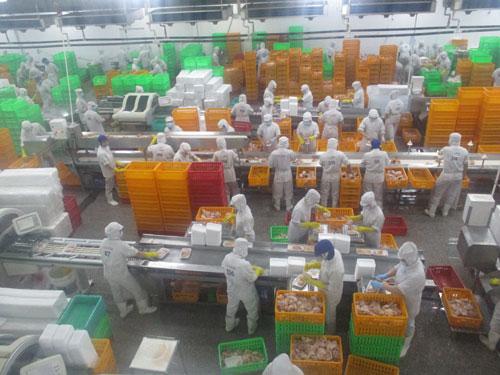Giúp doanh nghiệp khôi phục sản xuất - kinh doanh (*): Không để đứt gãy chuỗi cung ứng nông sản, thực phẩm - Ảnh 1.