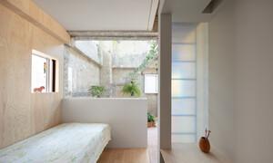 Căn nhà dành riêng cầu thang cho cây xanh - Ảnh 11.