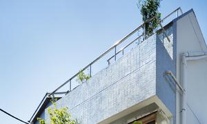 Căn nhà dành riêng cầu thang cho cây xanh - Ảnh 4.