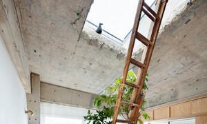 Căn nhà dành riêng cầu thang cho cây xanh - Ảnh 6.