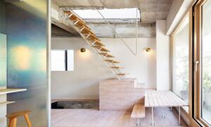 Căn nhà dành riêng cầu thang cho cây xanh - Ảnh 8.