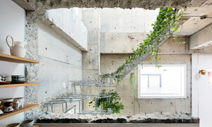 Căn nhà dành riêng cầu thang cho cây xanh - Ảnh 9.