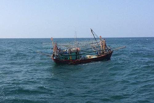Miền Trung đang mưa tầm tả, ruộng lúa ngã đổ, 1 tàu gặp nạn - Ảnh 17.