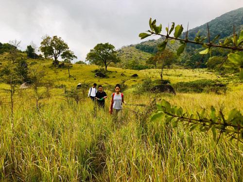 Núi Chúa - độc đáo hệ sinh thái khô hạn - Ảnh 2.