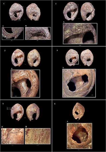 Choáng váng kho trang sức cổ xưa nhất thế giới: 150.000 tuổi - Ảnh 2.