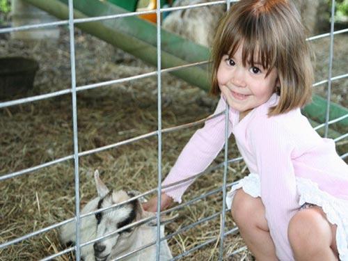 Bụi ở nông trang có tác dụng bảo vệ trẻ khỏi dị ứng Ảnh: TECH TIMES