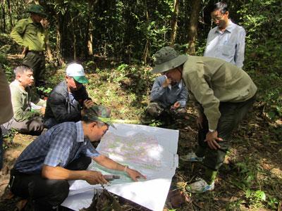 Đoàn khảo sát tại khu vực dự kiến mở tuyến đường tuần tra trong Vườn Quốc gia Cát Tiên