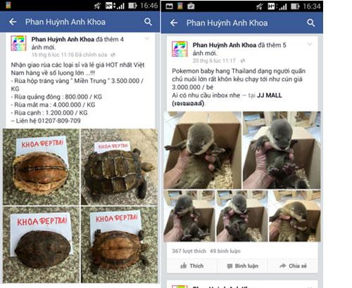 Các loài động vật nằm trong danh mục cấm bị Khoa rao bán trên Facebook. (Ảnh do WCS cung cấp)