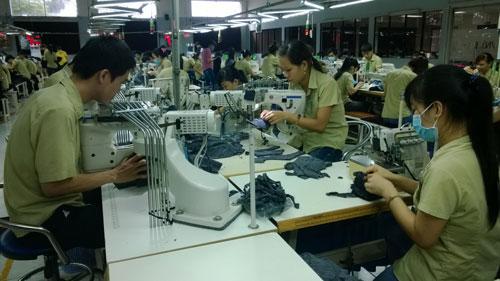 Năng suất lao động tăng khi tổ chức sản xuất hợp lýẢnh: Mai Chi