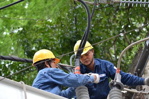 Tổng Công ty Điện lực TP HCM luôn xác định nhiệm vụ quan trọng hàng đầu là bảo đảm cung cấp điện an toàn, liên tục, ổn định