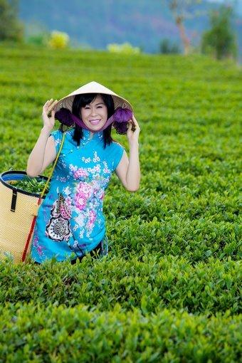 Nữ doanh nhân trong vườn trà ô long của công ty.