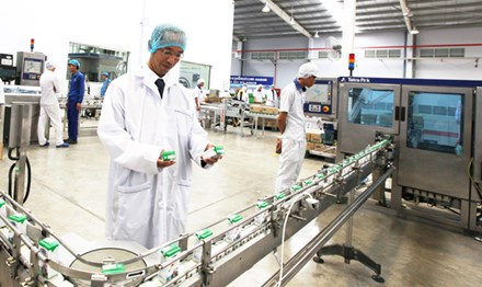 """Gần như tất cả lợi nhuận mà SCIC có được đều đến từ các DN """"khủng"""" như Vinamilk, FPT... (Trong ảnh: Dây chuyền sản xuất sữa Vinamilk). Ảnh: Kim Phương."""