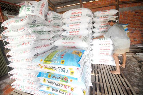 Nông dân quá phụ thuộc hệ thống cung ứng trong việc sử dụng phân bón Ảnh: Ngọc Trinh