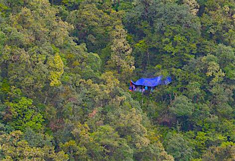 Cơ quan chức năng tổ chức khám nghiệm tử thi ngay tại rừng thuộc Vườn Quốc gia Hoàng Liên - Ảnh: Khánh Ngọc