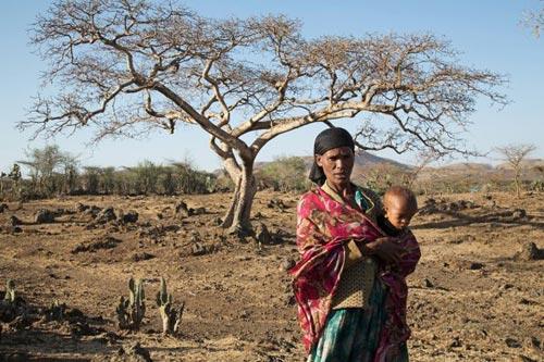Khoảng 240 triệu người ở 45 quốc gia đối mặt nguy cơ thiếu lương thực Ảnh: CERF