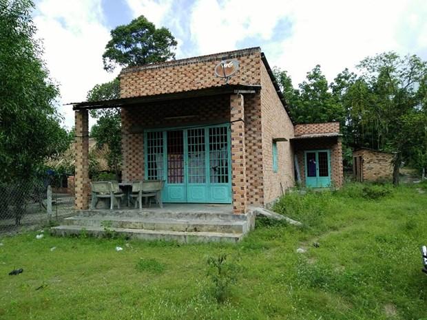 Ngôi nhà đầy cỏ dại của ông Bảnh.