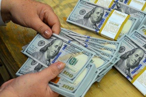 Giới ngân hàng và chuyên gia kinh tế đề xuất nên tăng lãi suất huy động USD Ảnh: TẤN THẠNH