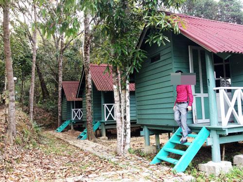 Các bungalow xây dựng không phép tồn tại đã lâu nhưng cơ quan chủ quản không biết Ảnh: HỒNG ÁNH